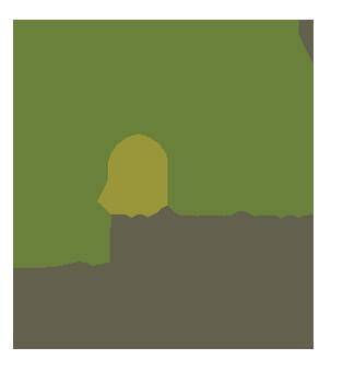 Náttúruminjasafn Íslands