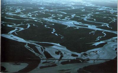 Hvert er mikilvægi straumvatna fyrir lífríkið, fiska og menn? Árnar eru lífæðar landsins