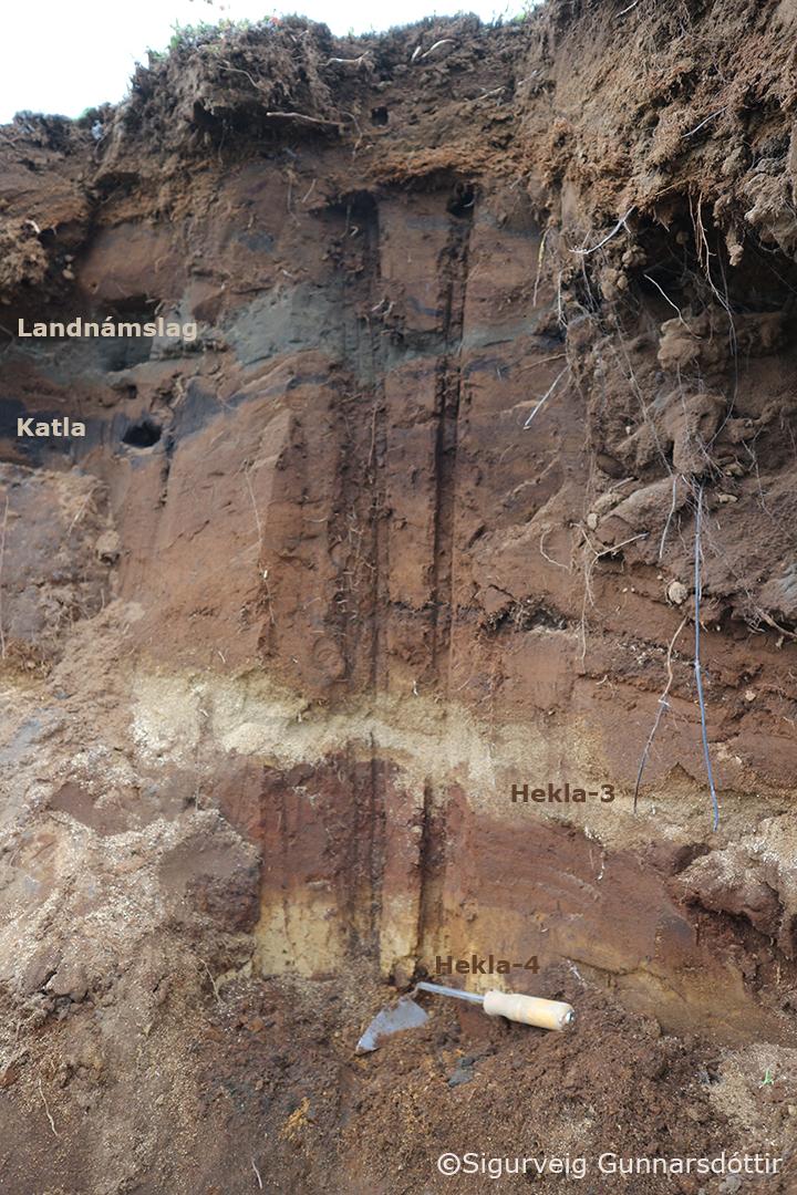 Jarðvegssnið þar sem sjá má fjögur algeng leiðarlög. Ljósu gjóskulögin eru Hekla-4 og Hekla-3, þau dökku og yngri eru Katla (1.150 ára gamalt) og Landnámslagið úr Bárðarbungu-Veiðivatnakerfinu (1.079 ára).