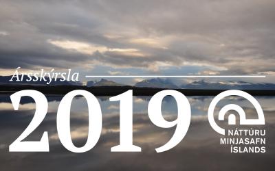 Ársskýrsla NMSÍ 2019